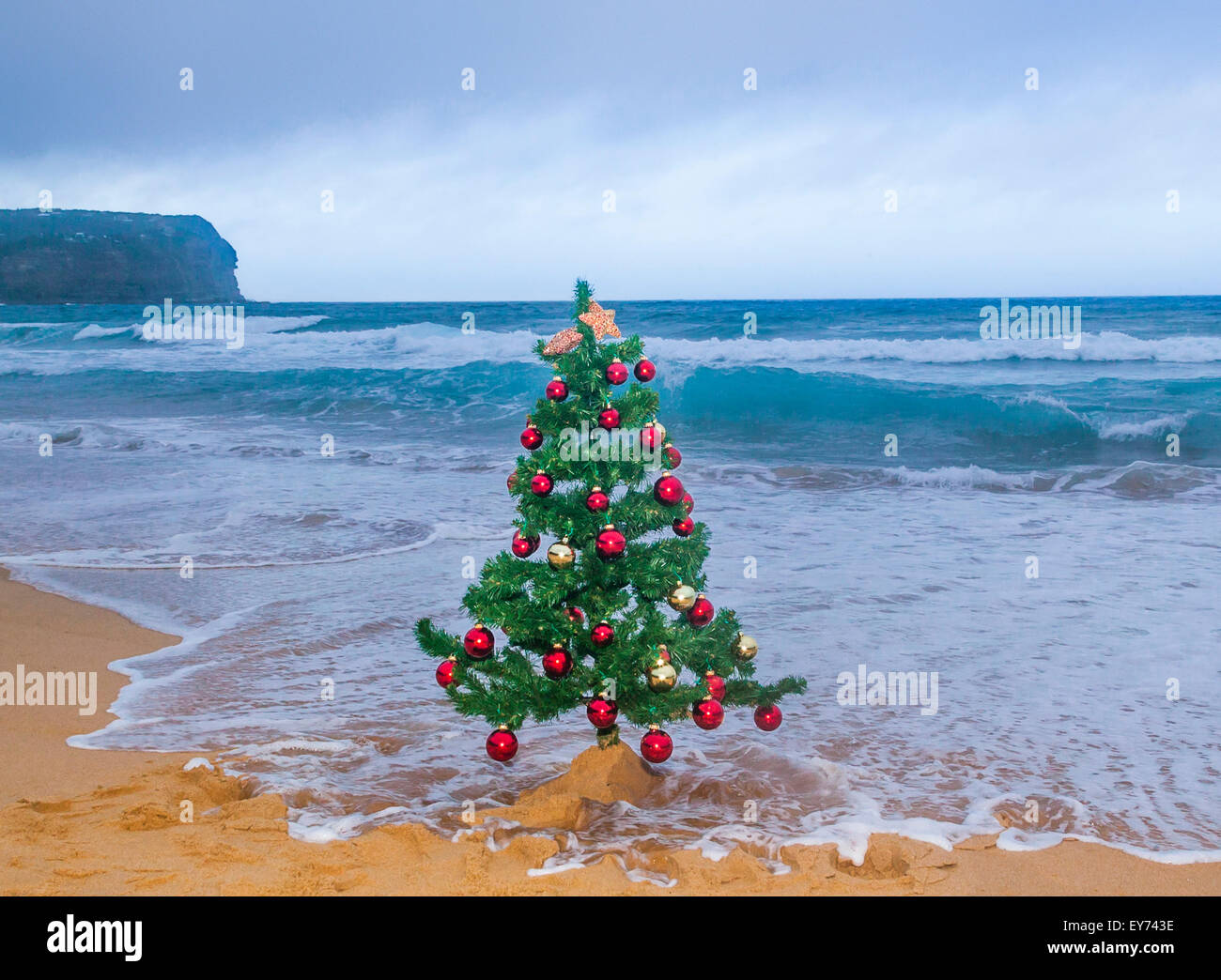 christmas at the central coast of new south wales macmasters beach stock image - Christmas At The Beach