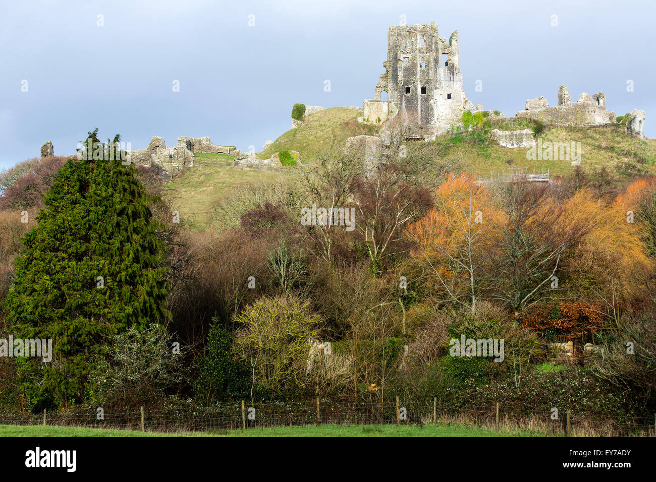 A view across to the historic remains of the 11th century Corfe Castle, built by William the Conqueror in Dorset, - Stock Image