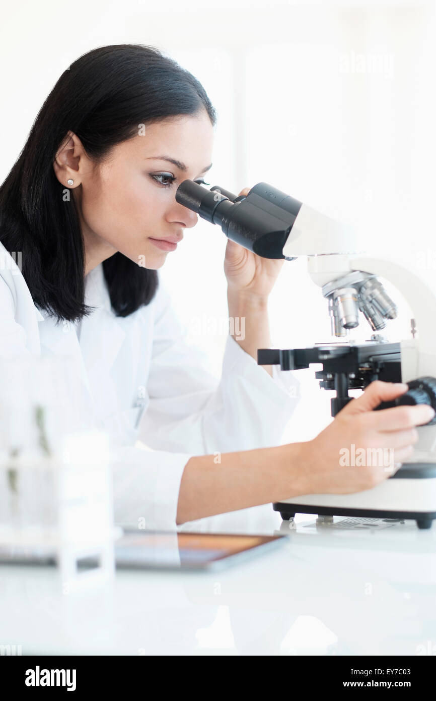 Woman doing laboratory research - Stock Image