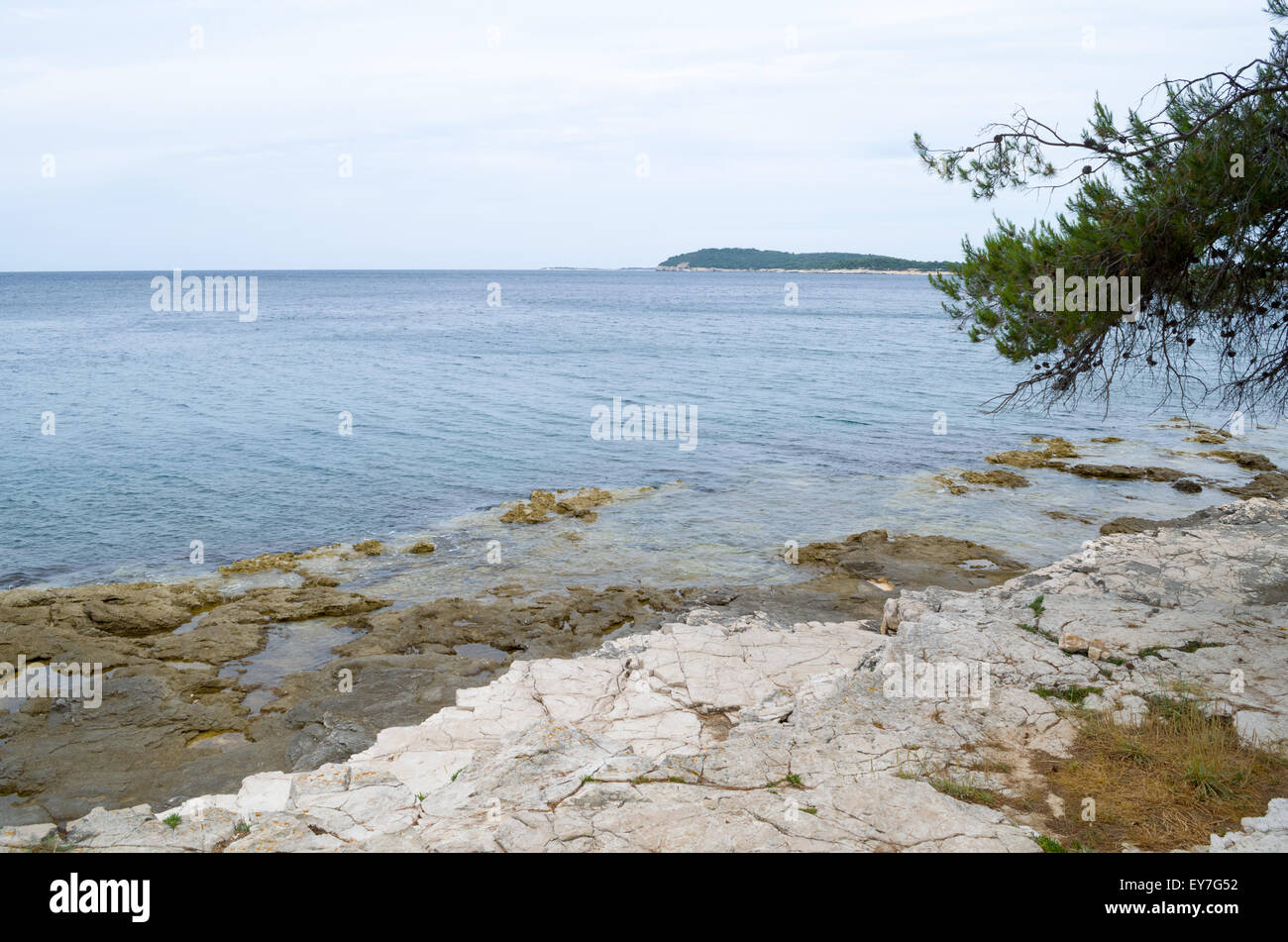 Rocky Coast with Pine and Distant Land on the Horizon - Stock Image
