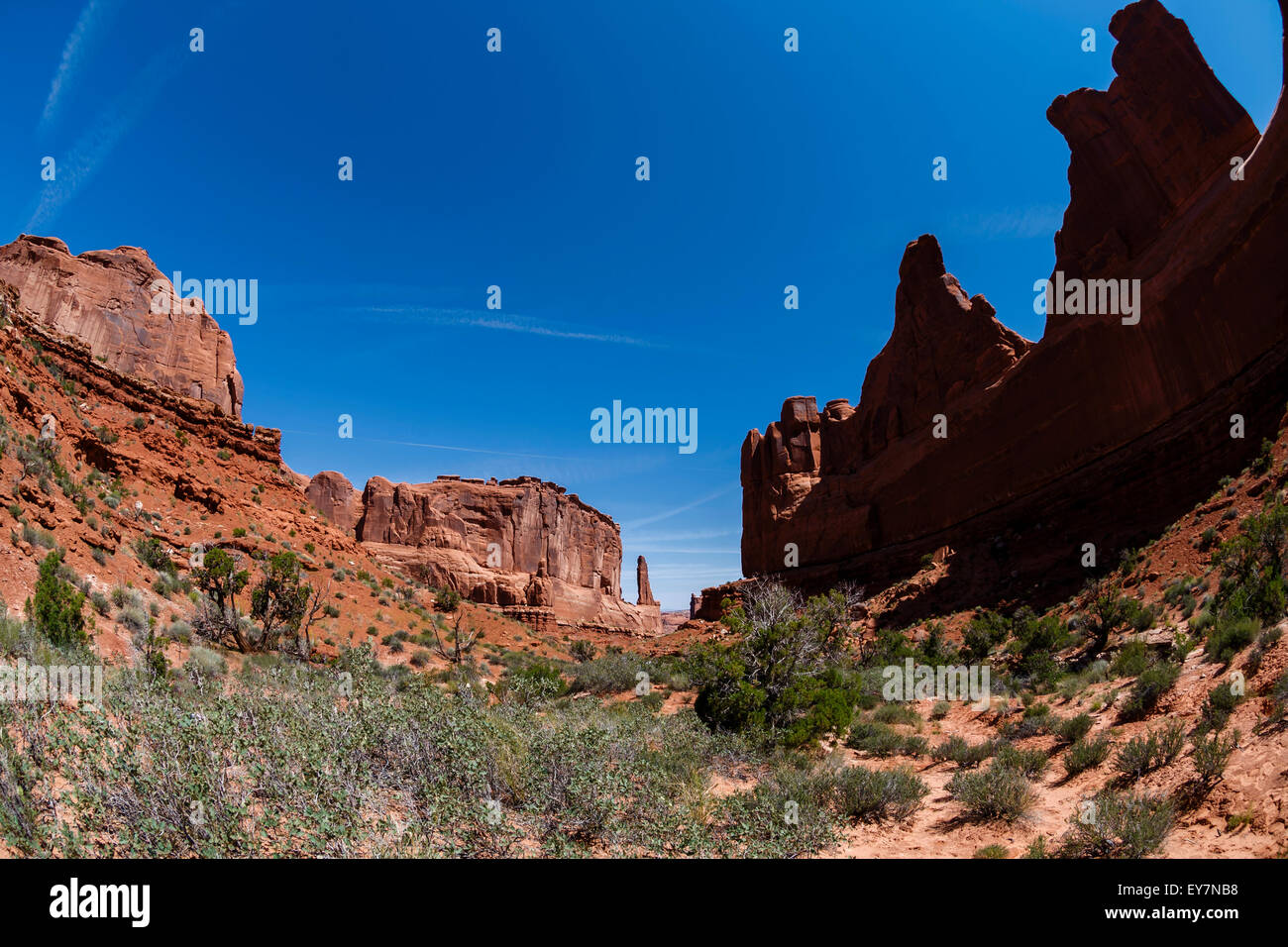 A series of rock fins that have broken out of the earth, Arches national Park, Moab, Utah, USA - Stock Image