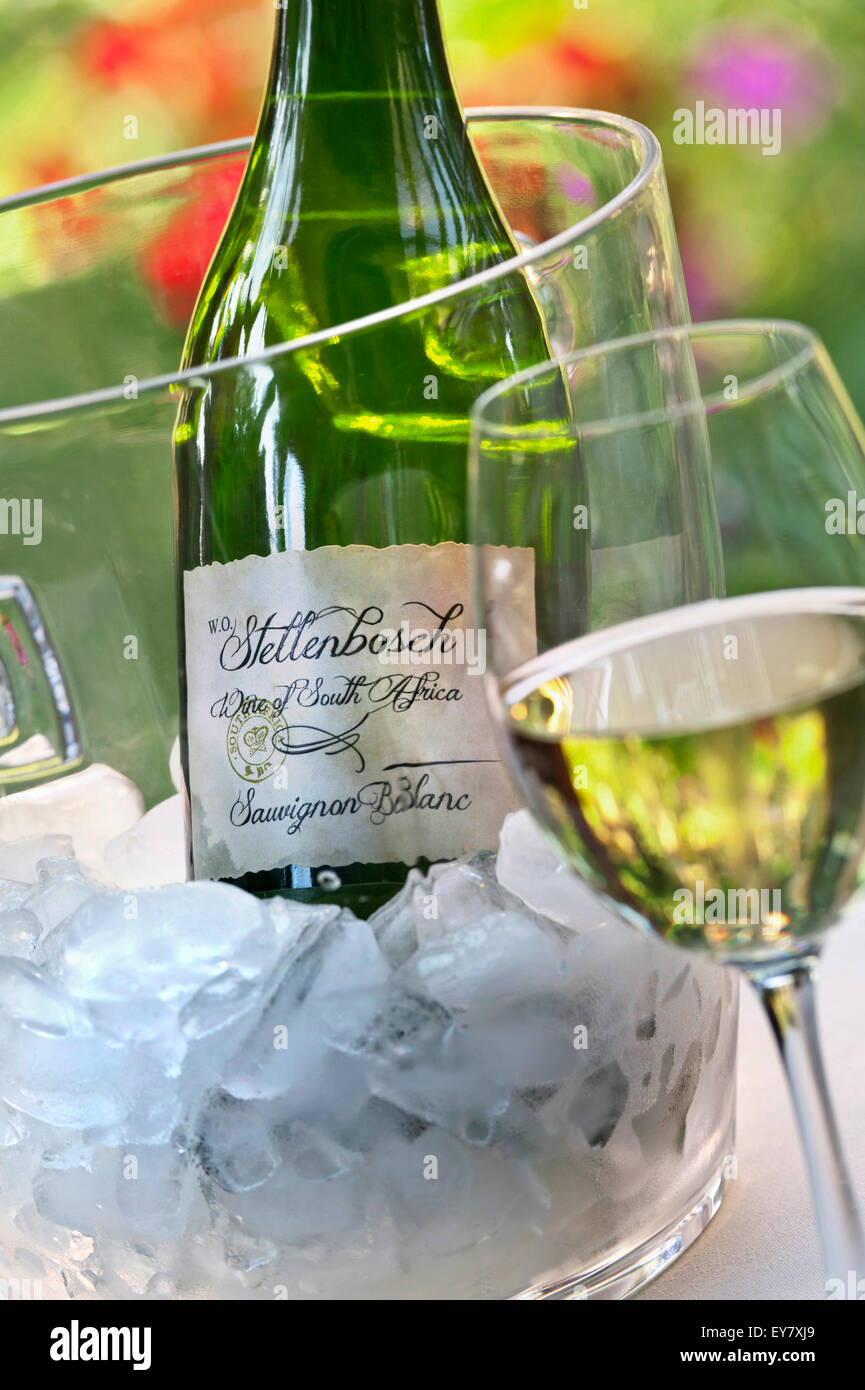 Stellenbosch South Africa Sauvignon Blanc wine glass bottle and ice bucket in sunny alfresco garden situation - Stock Image