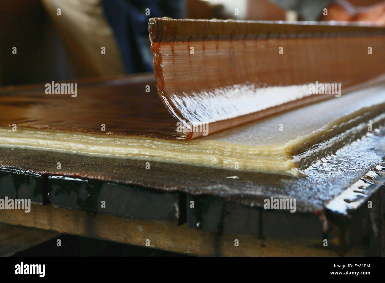 Japanese traditional paper crafting studio Stock Photo