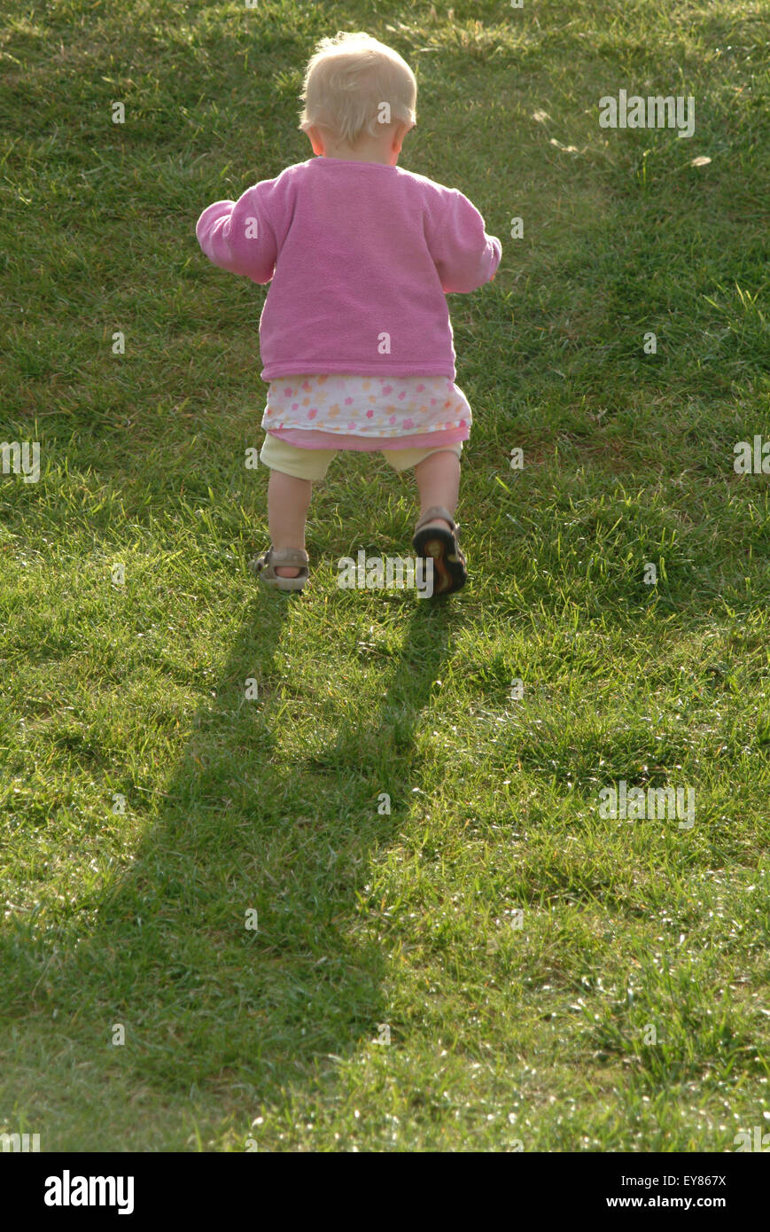 Rear view of baby toddling, learning to walk - Stock Image