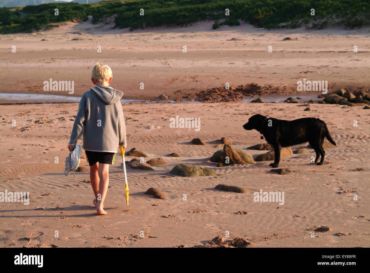 Rear view of a young boy walking alone with his dog on the beach - Stock Image