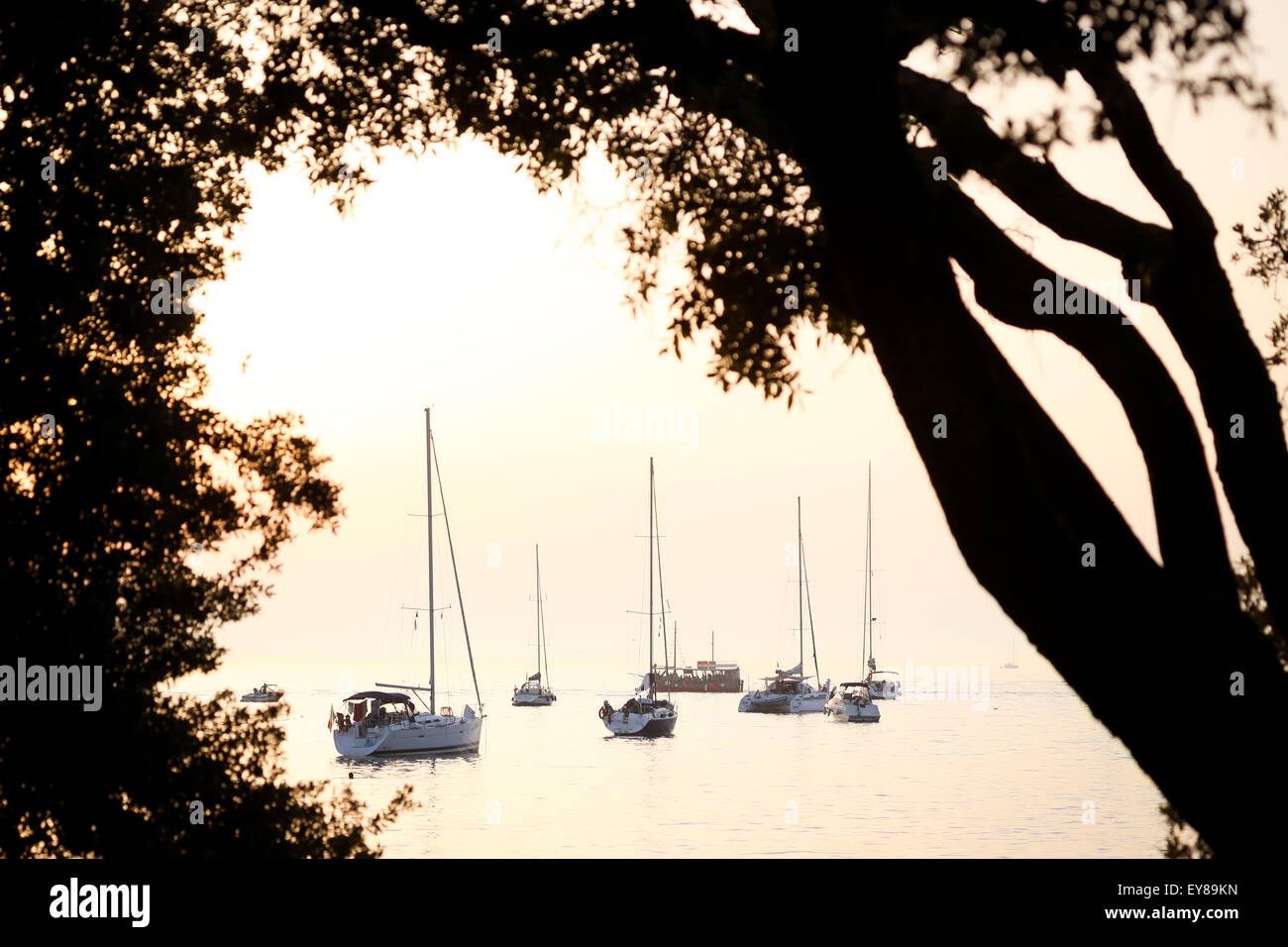 A view of a group of sailboats anchored in the Adriatic sea at sunset in Rovinj, Croatia. Stock Photo