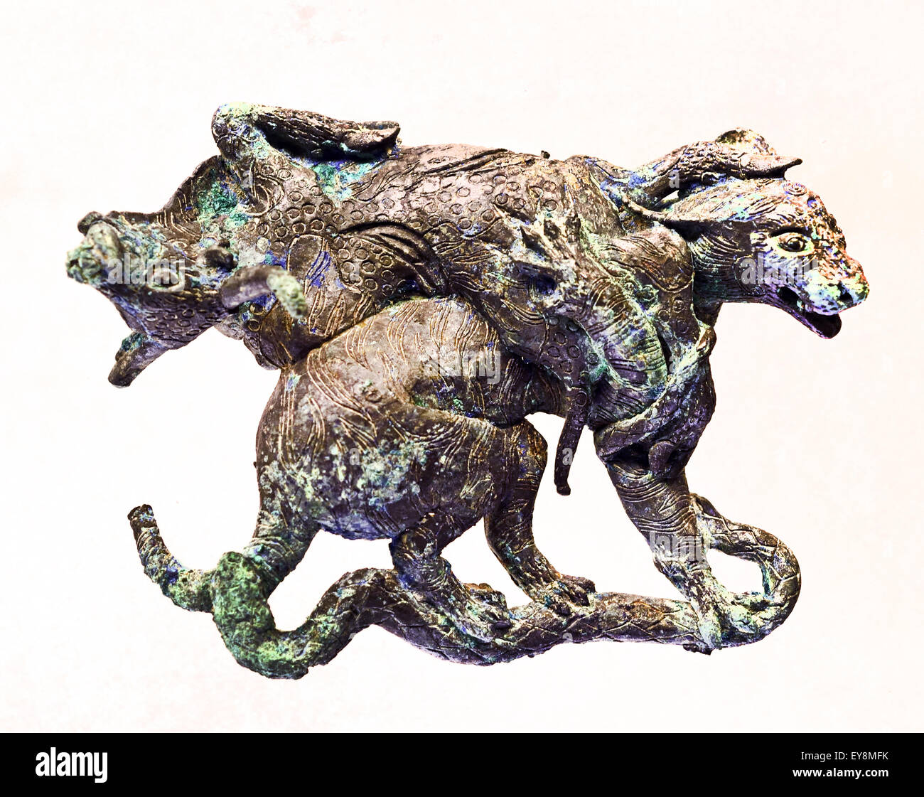 Gilt Ornament of Animal Combating - Western Han ( 206 B.C. A.D. 8 Bronze Shanghai Museum of ancient Chinese art - Stock Image