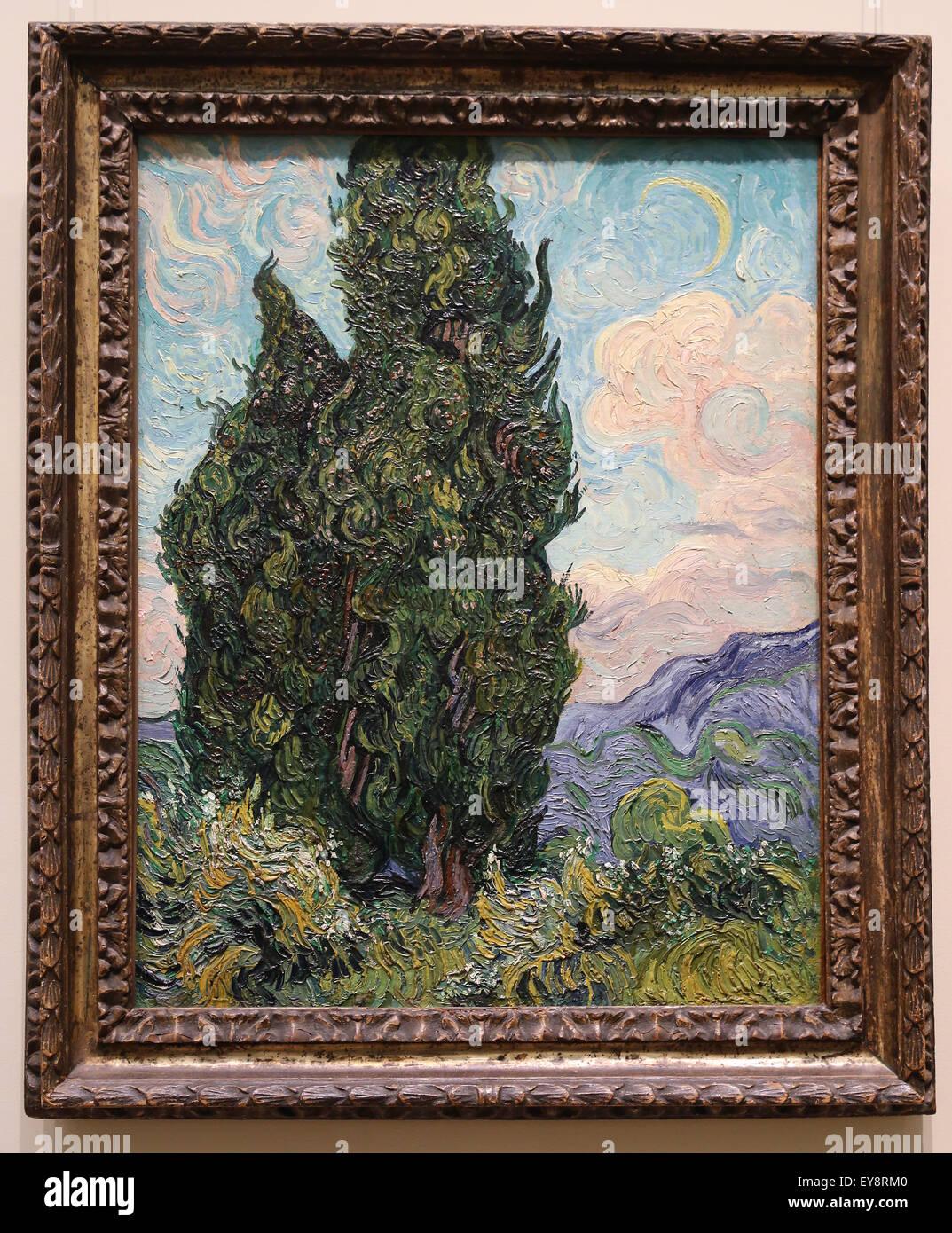 Vincent van Gogh (1853-1890).  Dutch painter. Cypresses, 1889. Oil on canvas. Metropolitan Museum of Art. NY. USA. - Stock Image