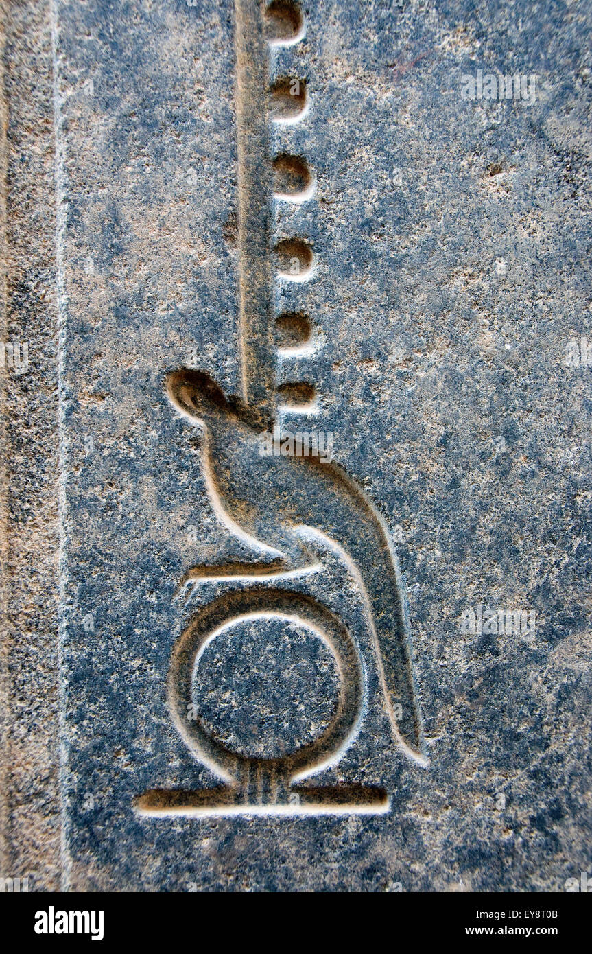 Luxor, Egypt. Temple of Luxor (Ipet resyt): the hieroglyph means eternity - Stock Image