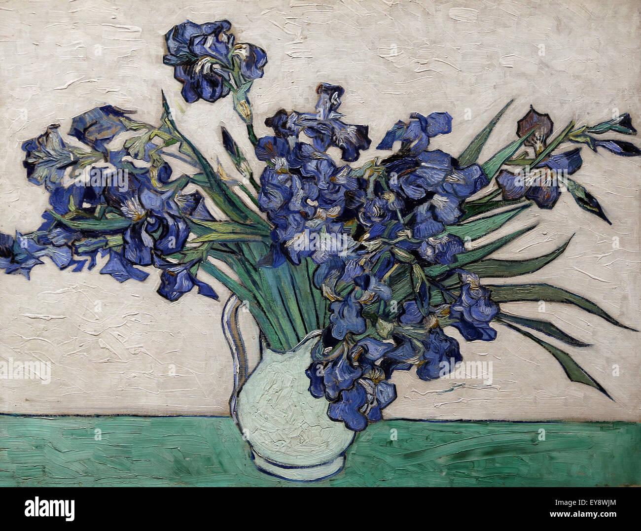 Vincent van Gogh (1853-1890).  Dutch painter. Irise, 1890. Oil on canvas. Metropolitan Museum of Art. NY. USA. - Stock Image