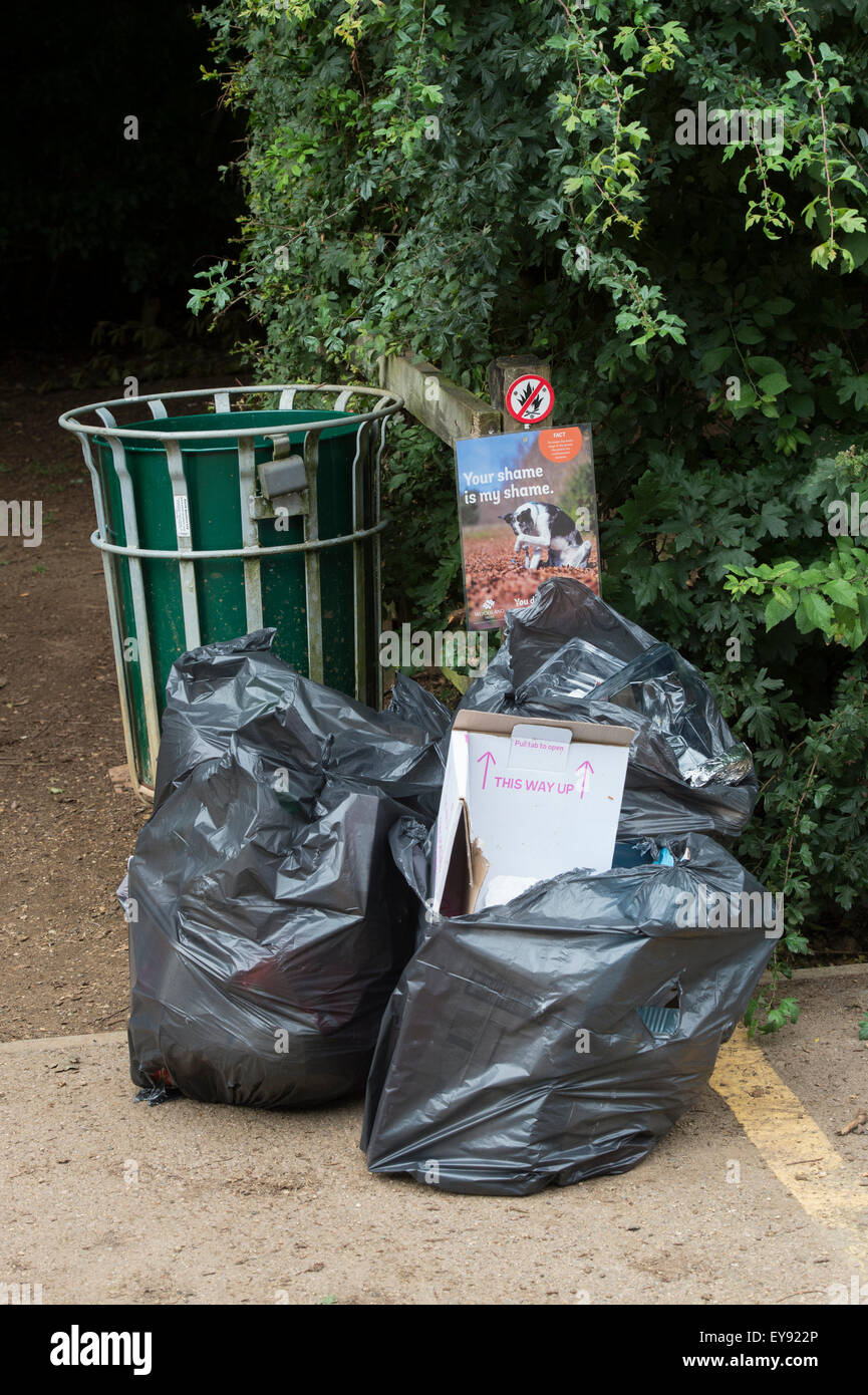 Fly tipping rubbish bags by a bin in a woodland carpark. Oxfordshire, England - Stock Image