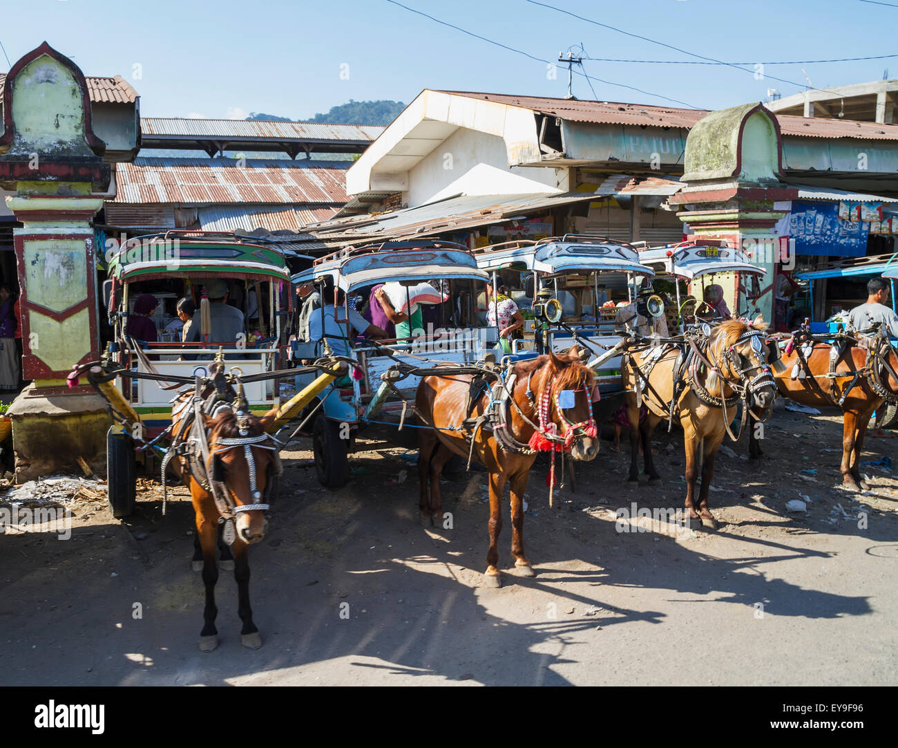 Cidomos, horse-drawn carriages, Lombok, West Nusa Tenggara, Indonesia - Stock Image