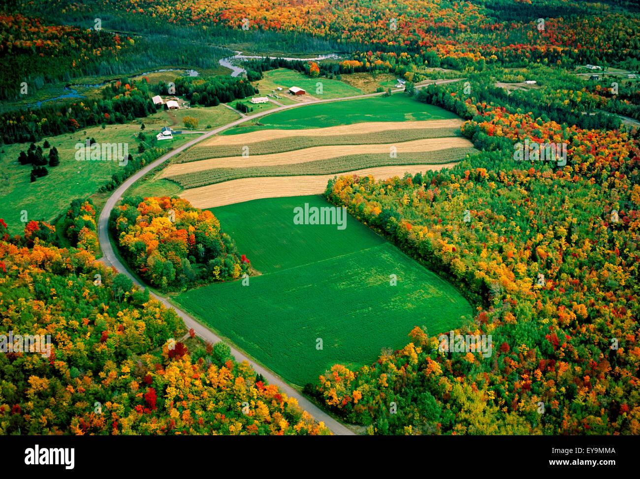 Maine,Scenic,Aerial View,aroostook county Stock Photo: 85651002 - Alamy