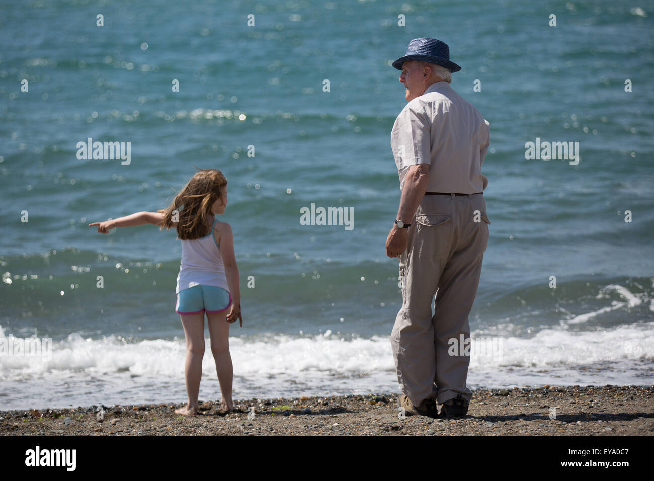 A grandfather and granddaughter watching waves at the seaside - Stock Image