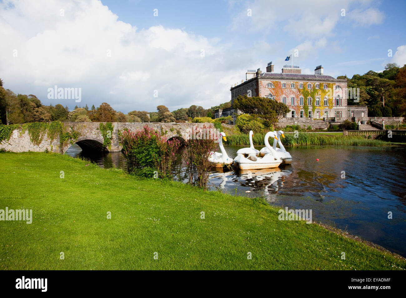 Paddleboats In The Shape Of Swans In A Lake At Westport House; Westport, County Mayo, Ireland Stock Photo