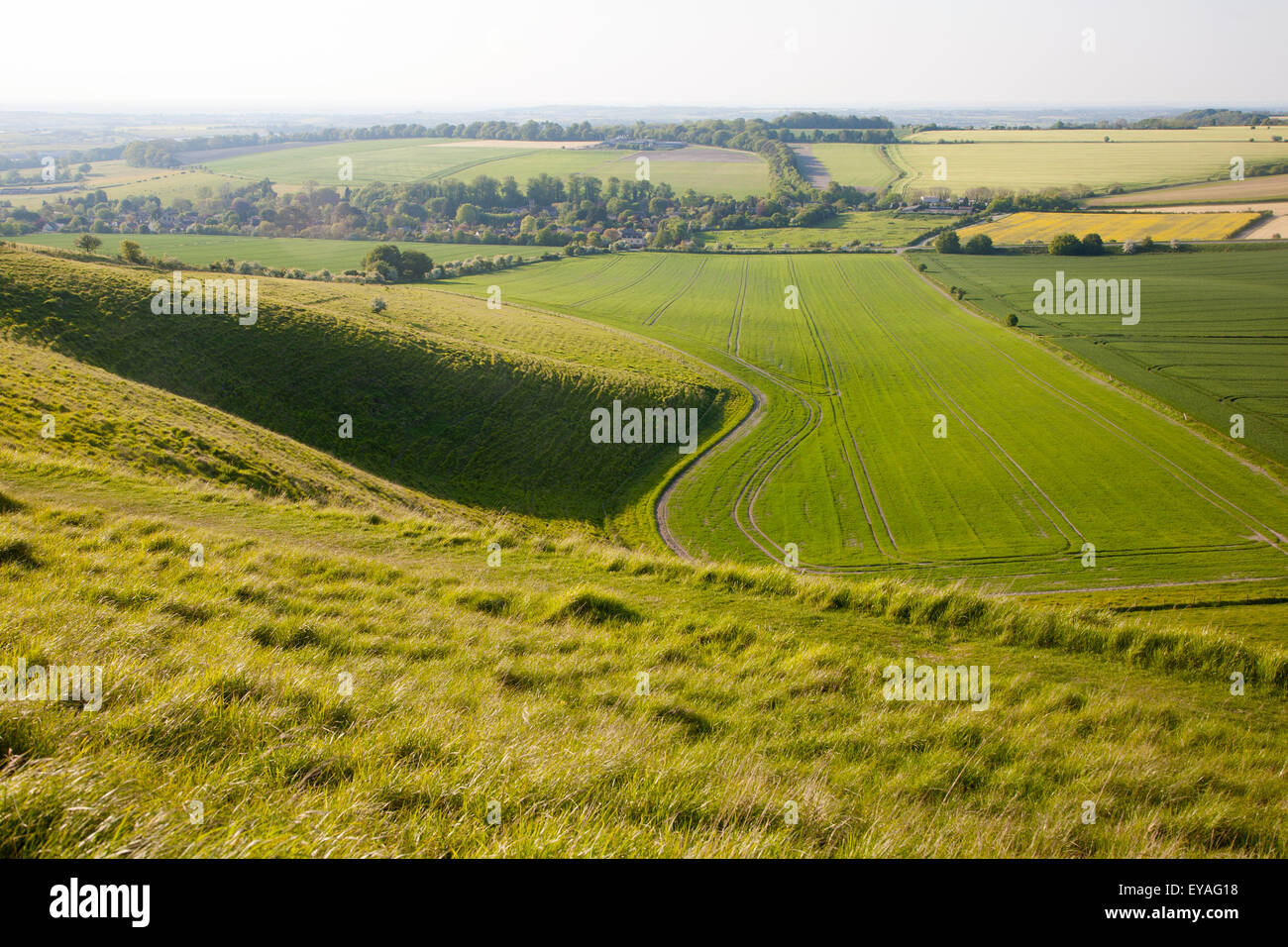 Summer view of arable fields and chalk landscape from Cherhill Down escarpment, Wiltshire, England, UK Stock Photo