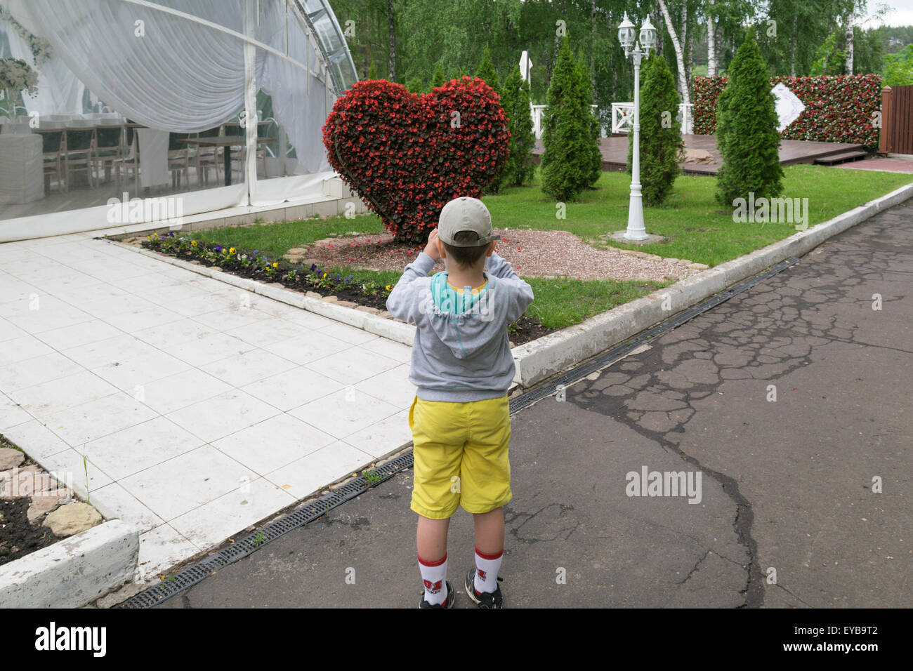 A child (a little boy of 6 years) admires topiary figure in the form of a large heart of flowers Stock Photo