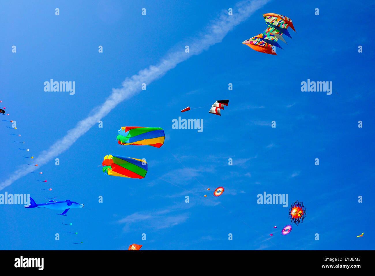 Colourful and animal shaped kites flying. - Stock Image
