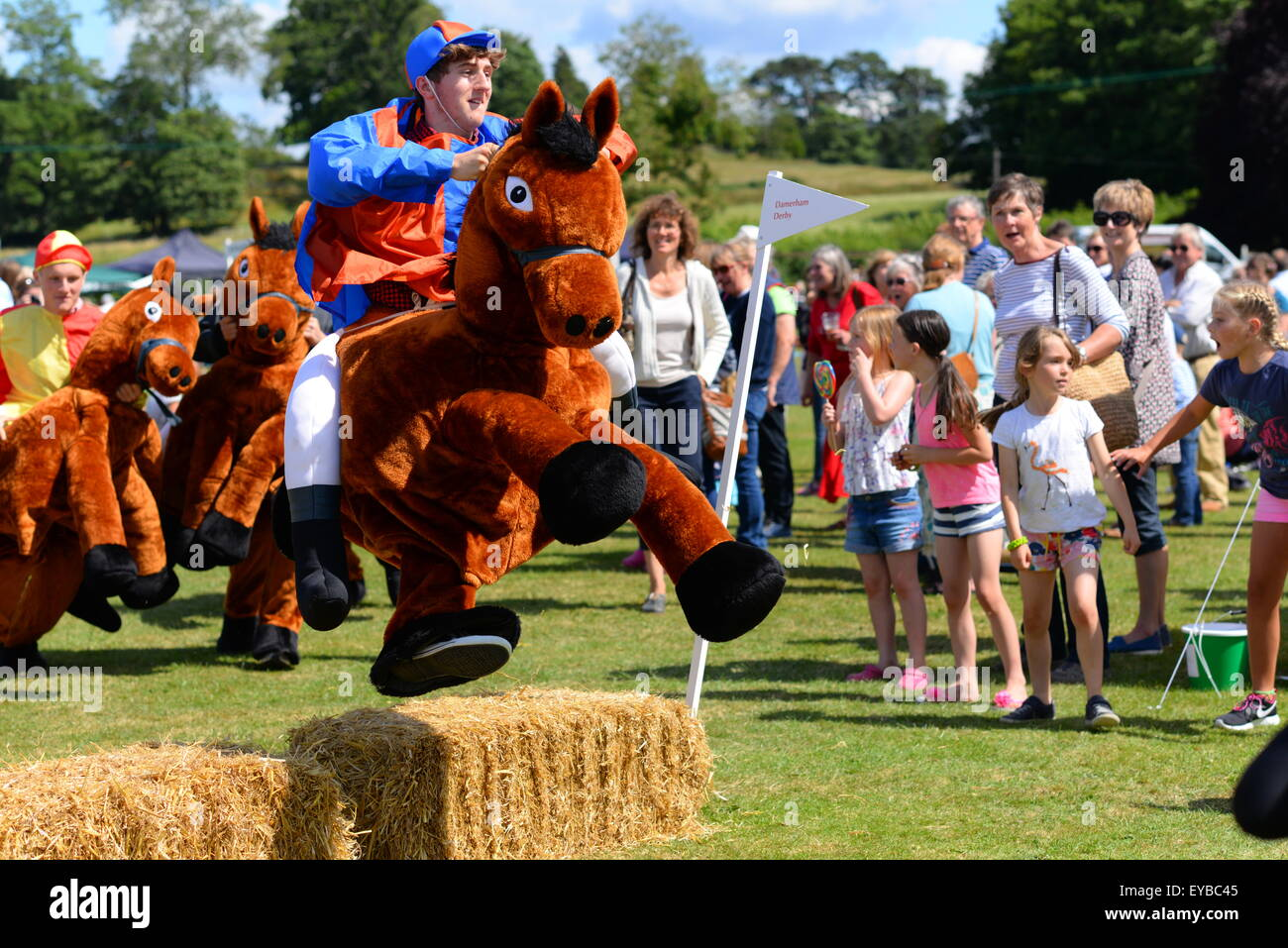 Hampshire, UK. 25th July, 2015. A jockey and his mount takes a jump in a Damerham Derby 'horse' race at - Stock Image