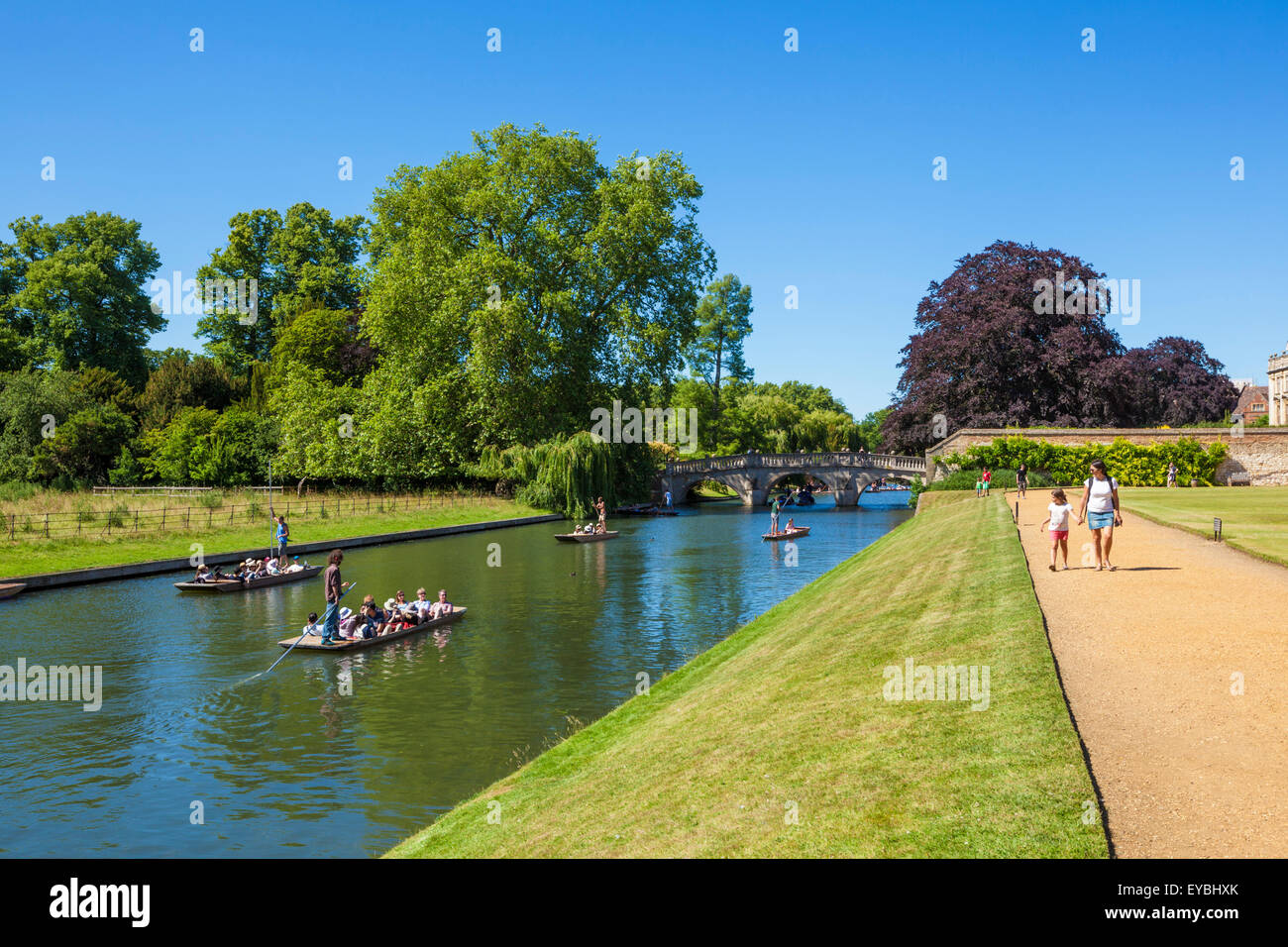 Punting on the River cam Cambridge Cambridgeshire England UK GB EU Europe - Stock Image