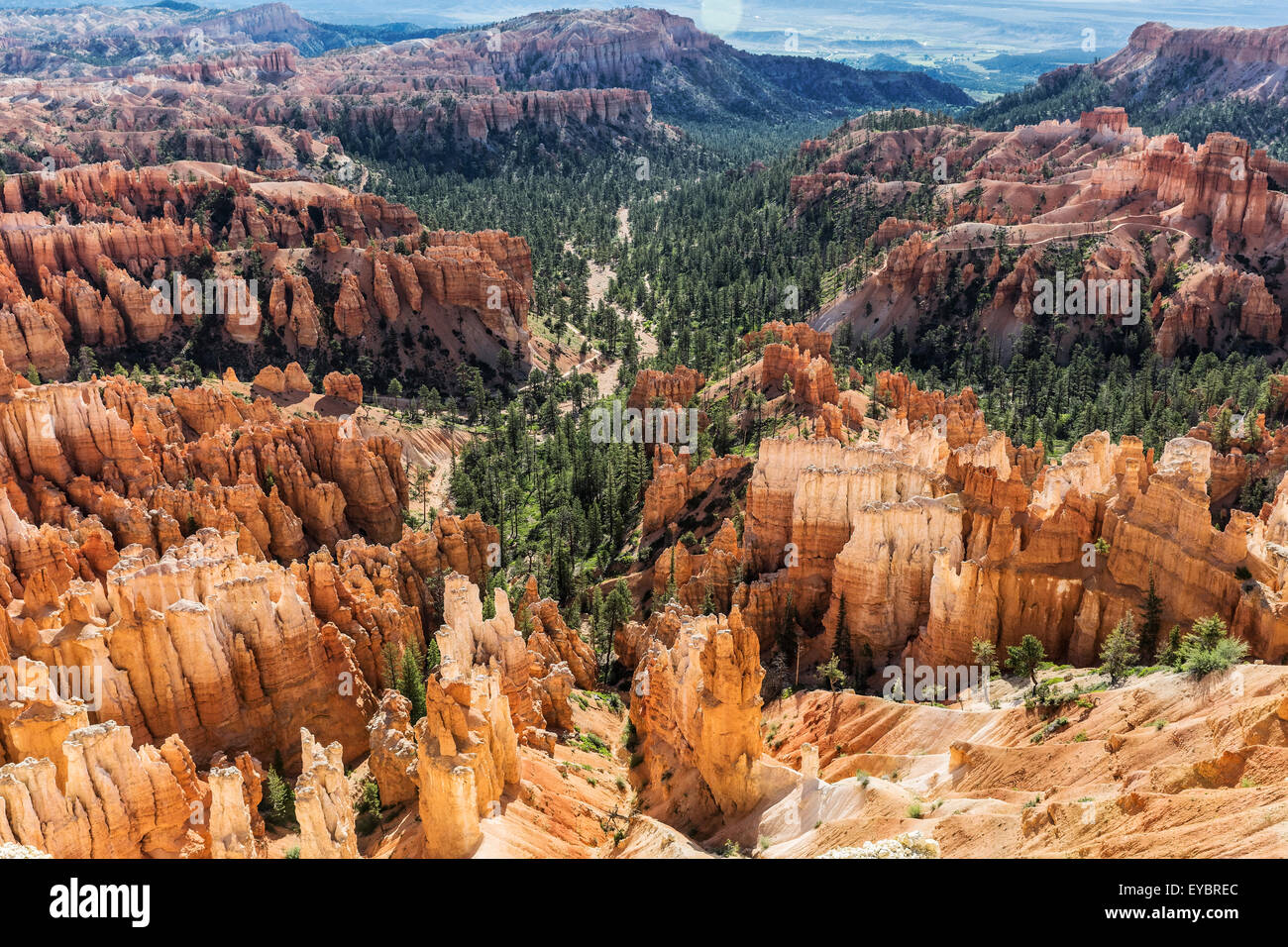 Bryce Canyon National Park, Utah - Stock Image