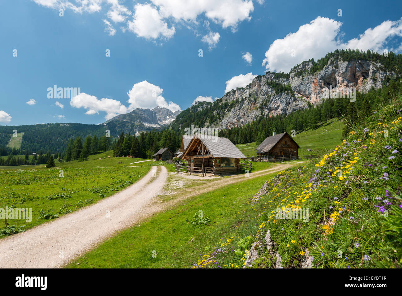 Alpine cabins at Wurzeralm, Austria Stock Photo
