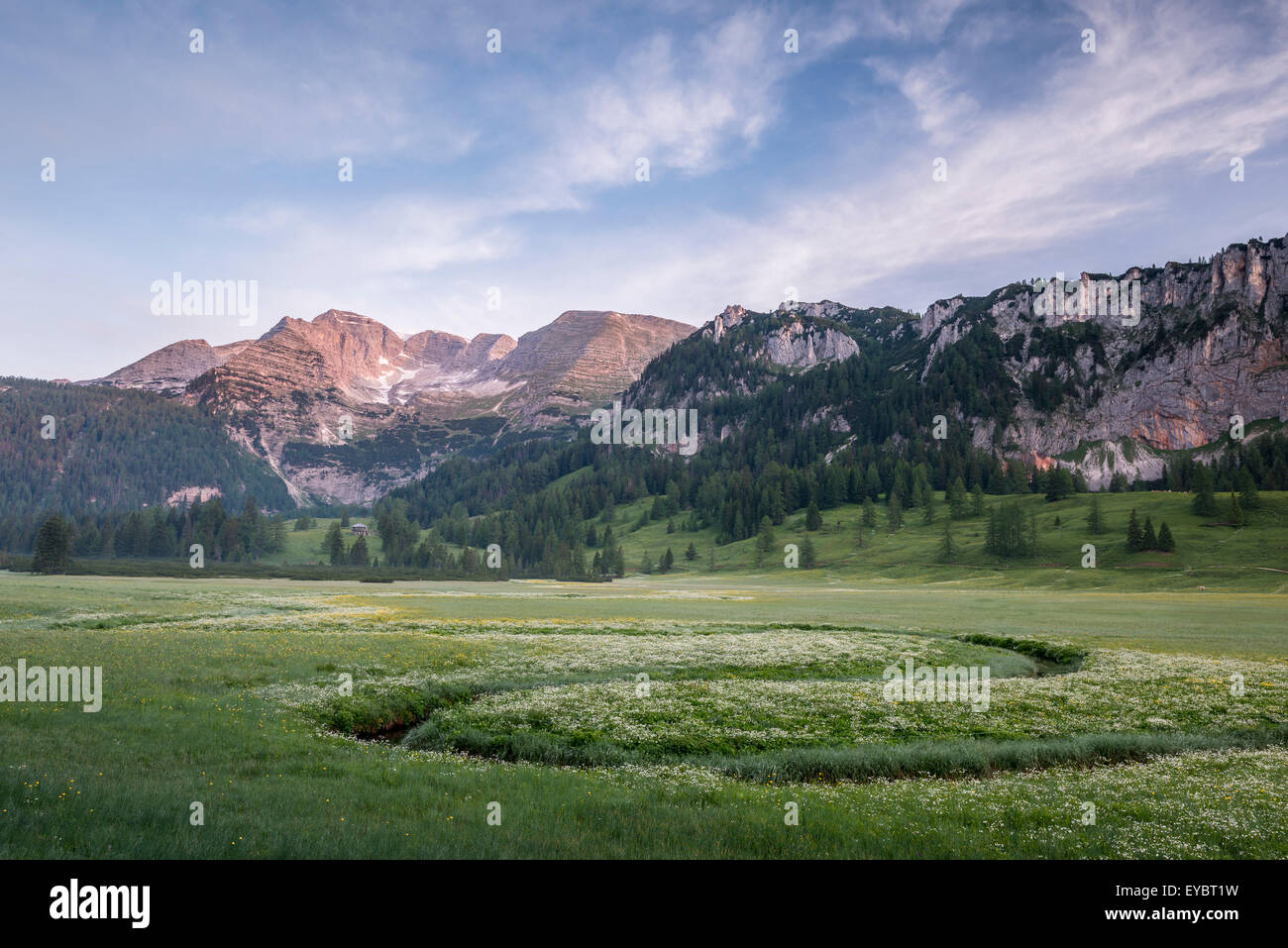 Morning atmosphere at Wurzeralm, Austria Stock Photo