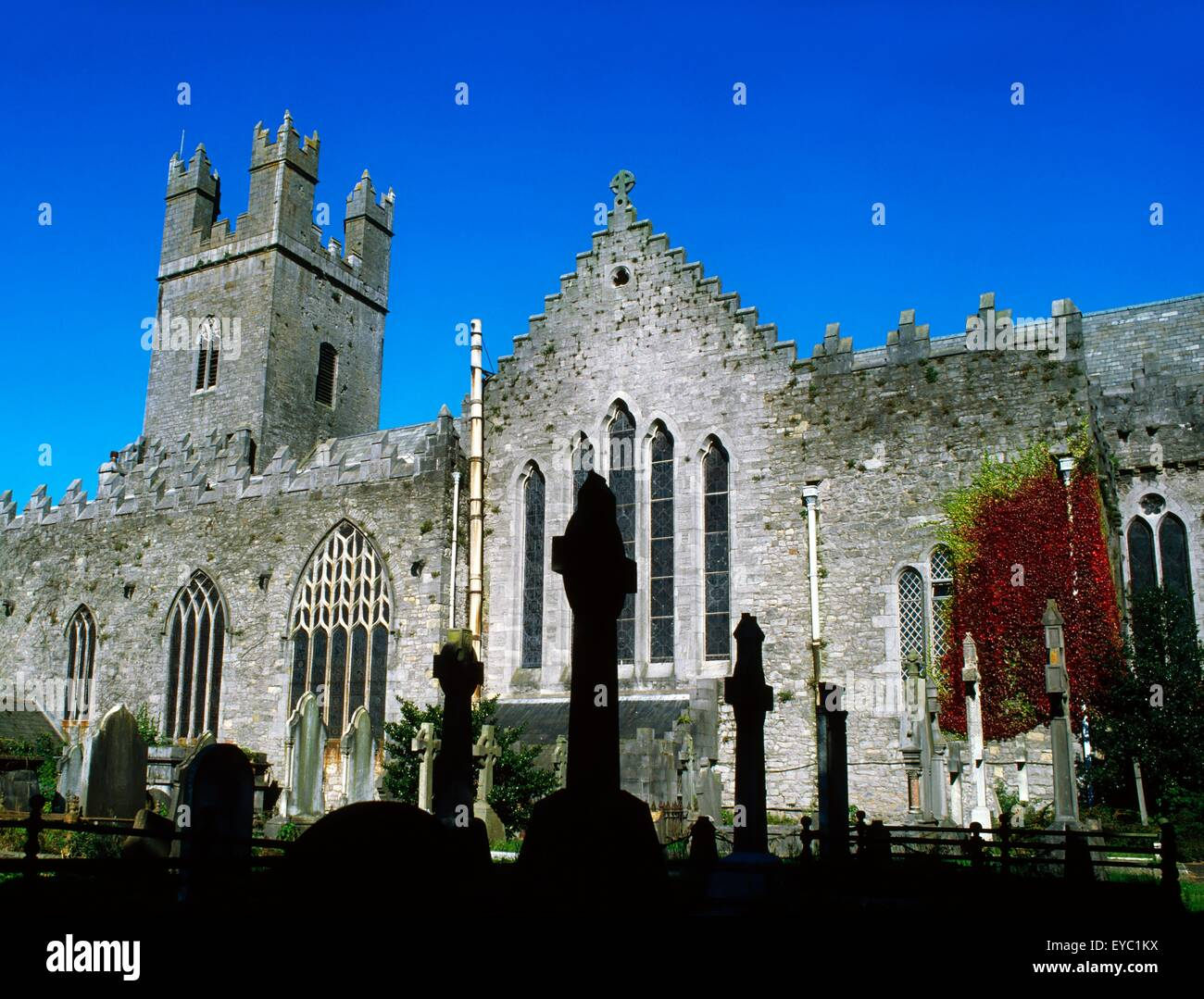 St Mary's Cathedral, Co Limerick, Ireland - Stock Image
