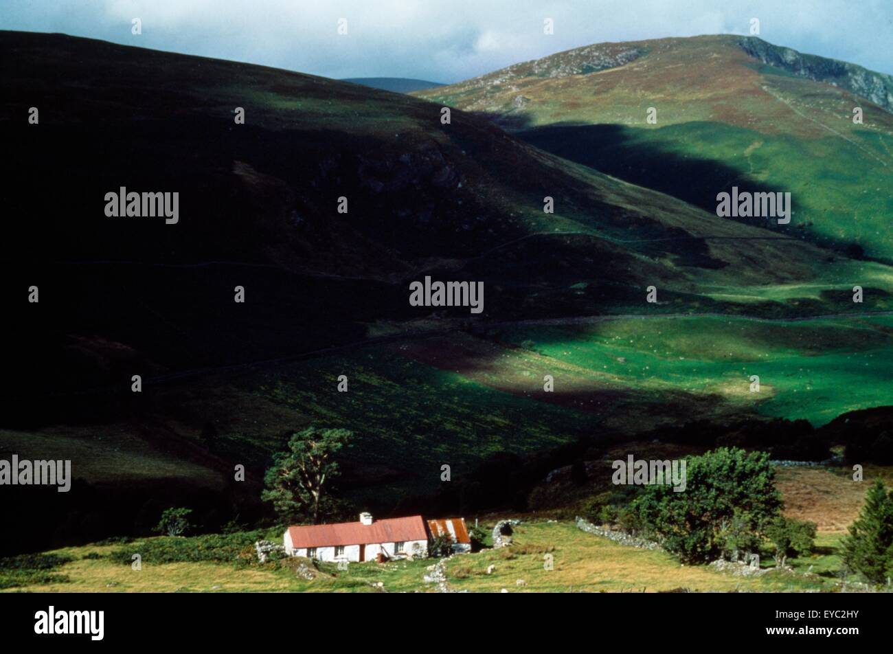 Co Wicklow, Lough Dan, Cottages - Stock Image
