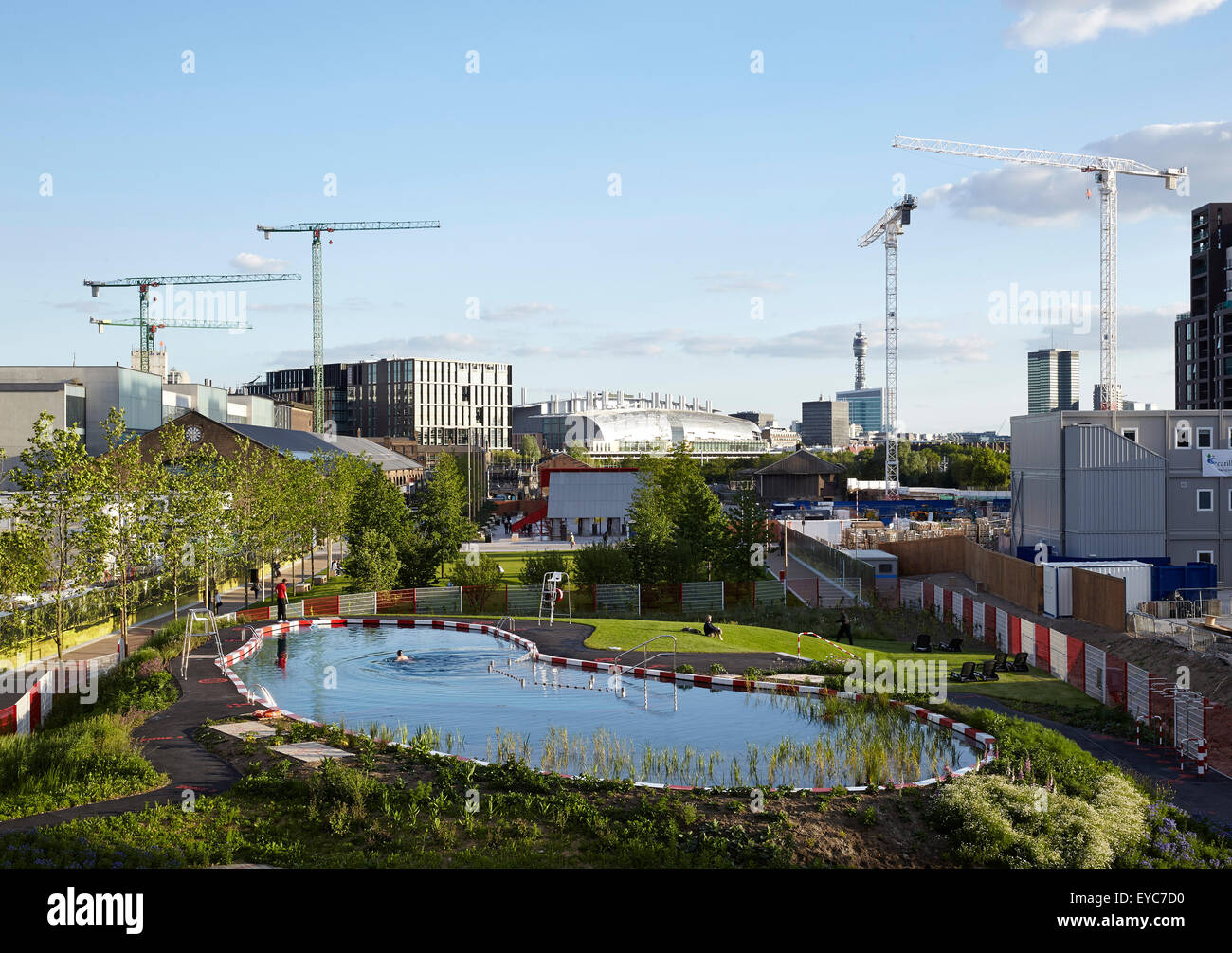 View of the pond with swimmers and a sunbather, cranes and development in the background. Kings Cross Pond Club, - Stock Image