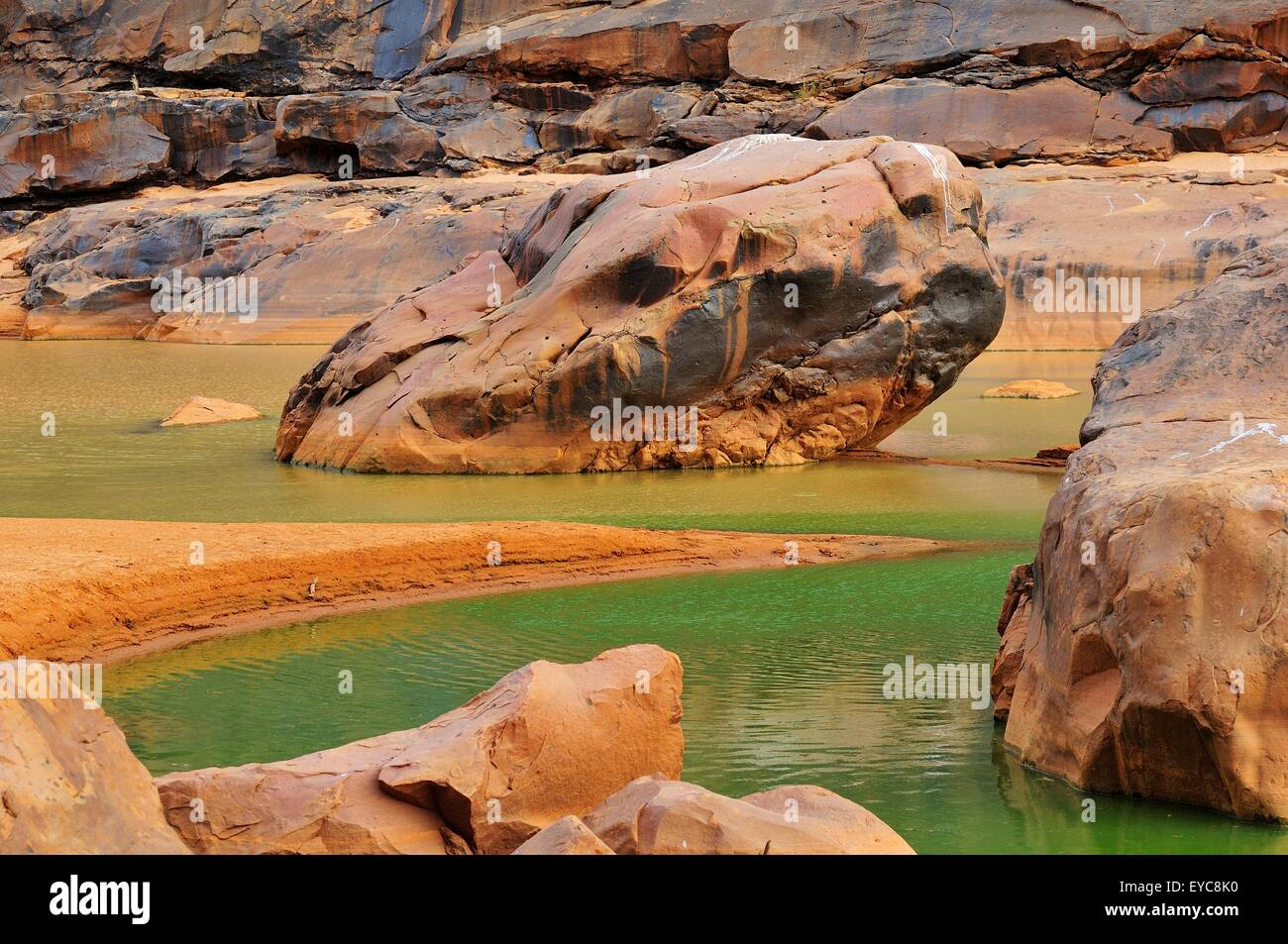 River valley with year-round water supplies, Guelta of Matmata, Tagant Region, Mauritania - Stock Image