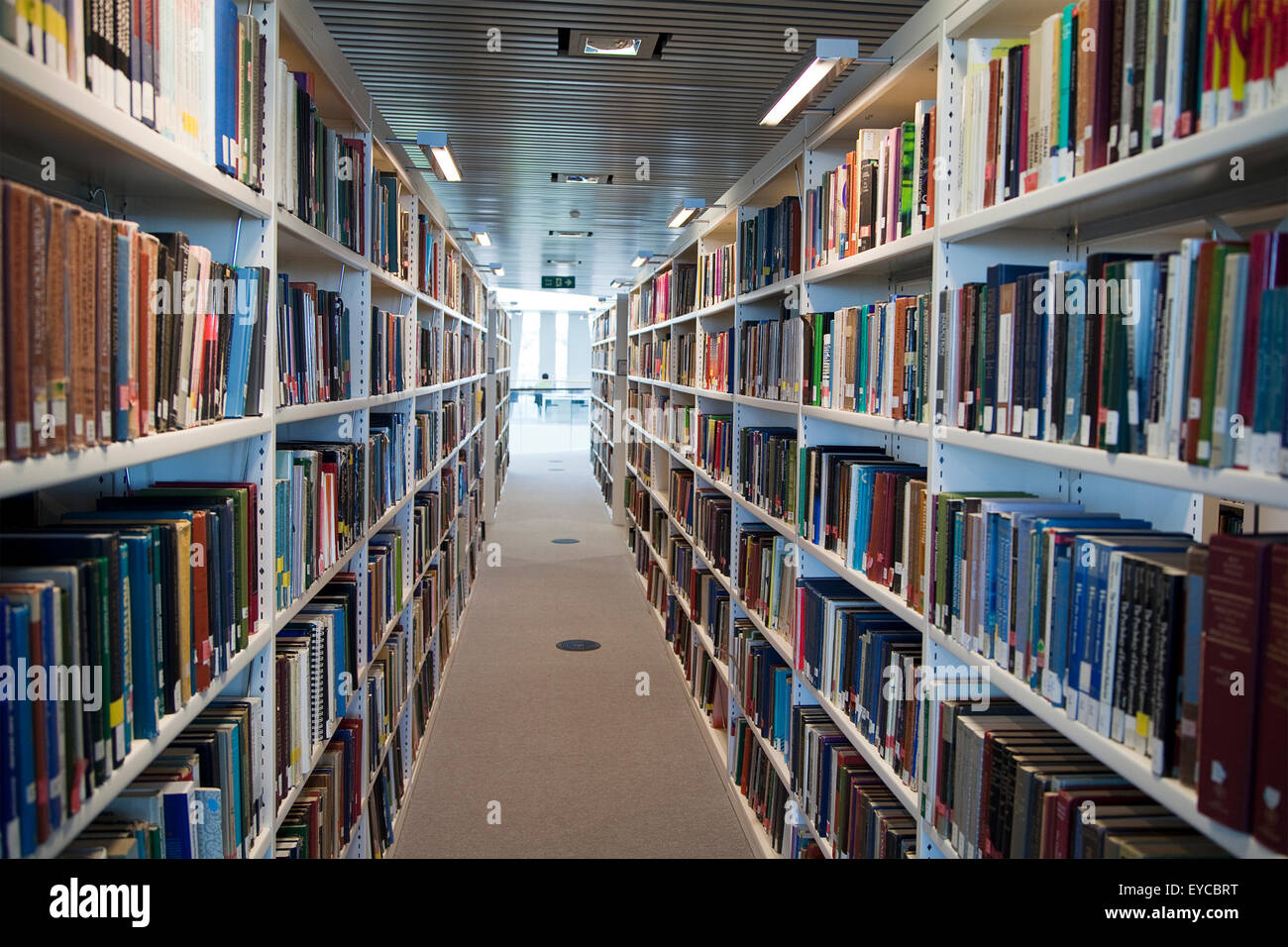 Bookshelves in a university library - Stock Image