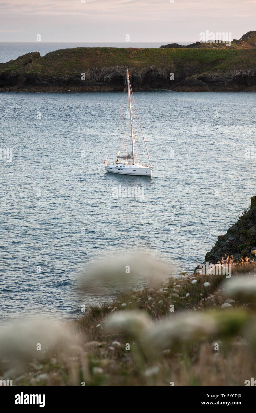 Anchored in Mullion Cove, Cornwall - Stock Image