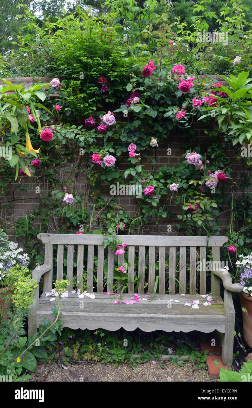 East Ruston vicarage gardens, Norfolk 2015 - Stock Image