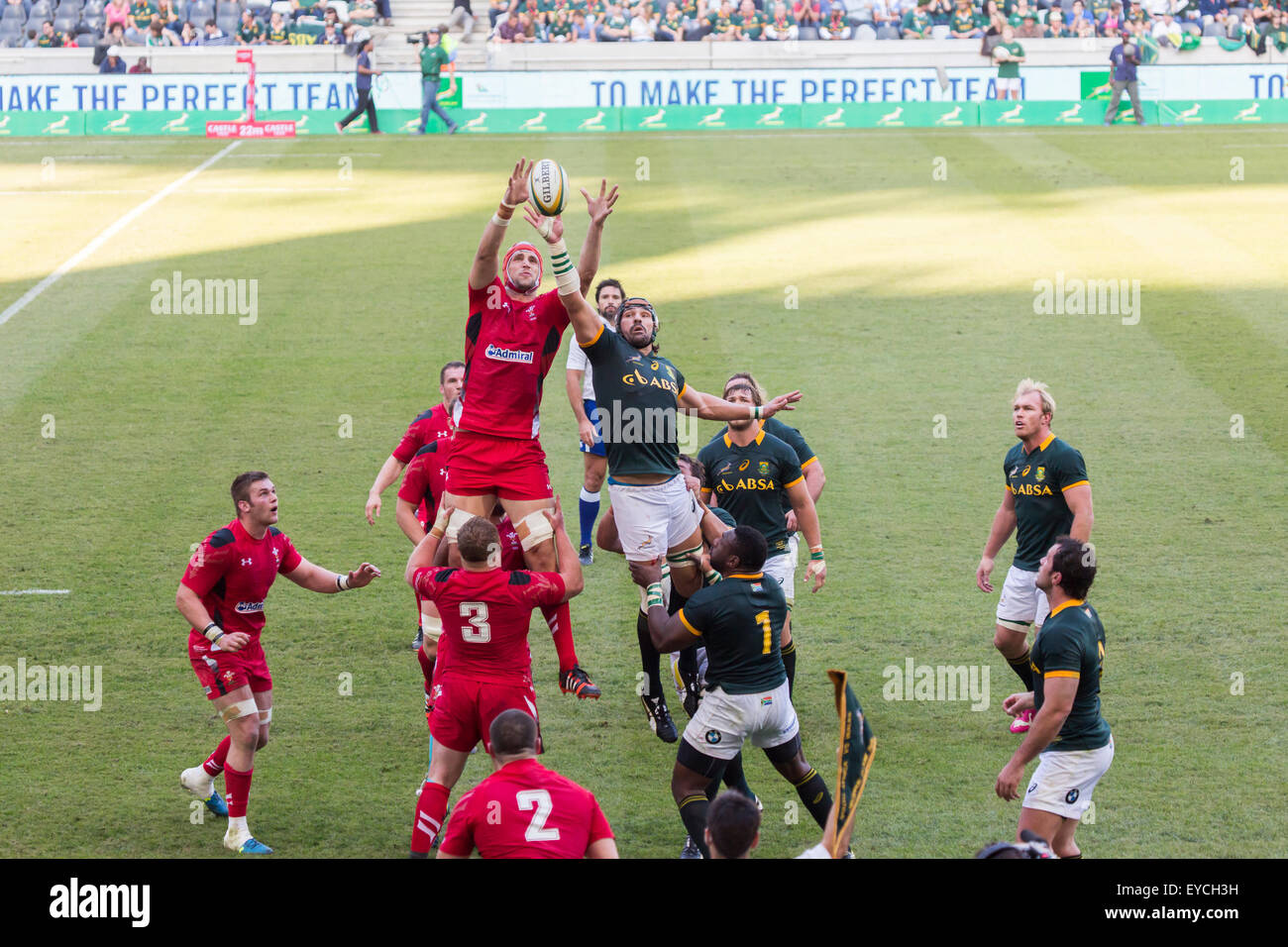Victor Matfield supported by Tendai Mtawarira of South Africa stealing the lineout ball Wales during the 2nd test - Stock Image