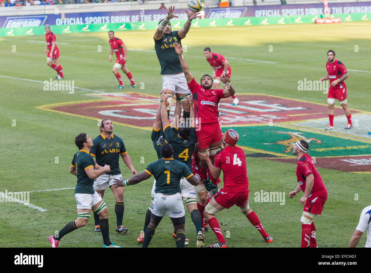 Victor Matfield of South Africa catching the lineout ball Wales  during the 2nd test match between South Africa - Stock Image
