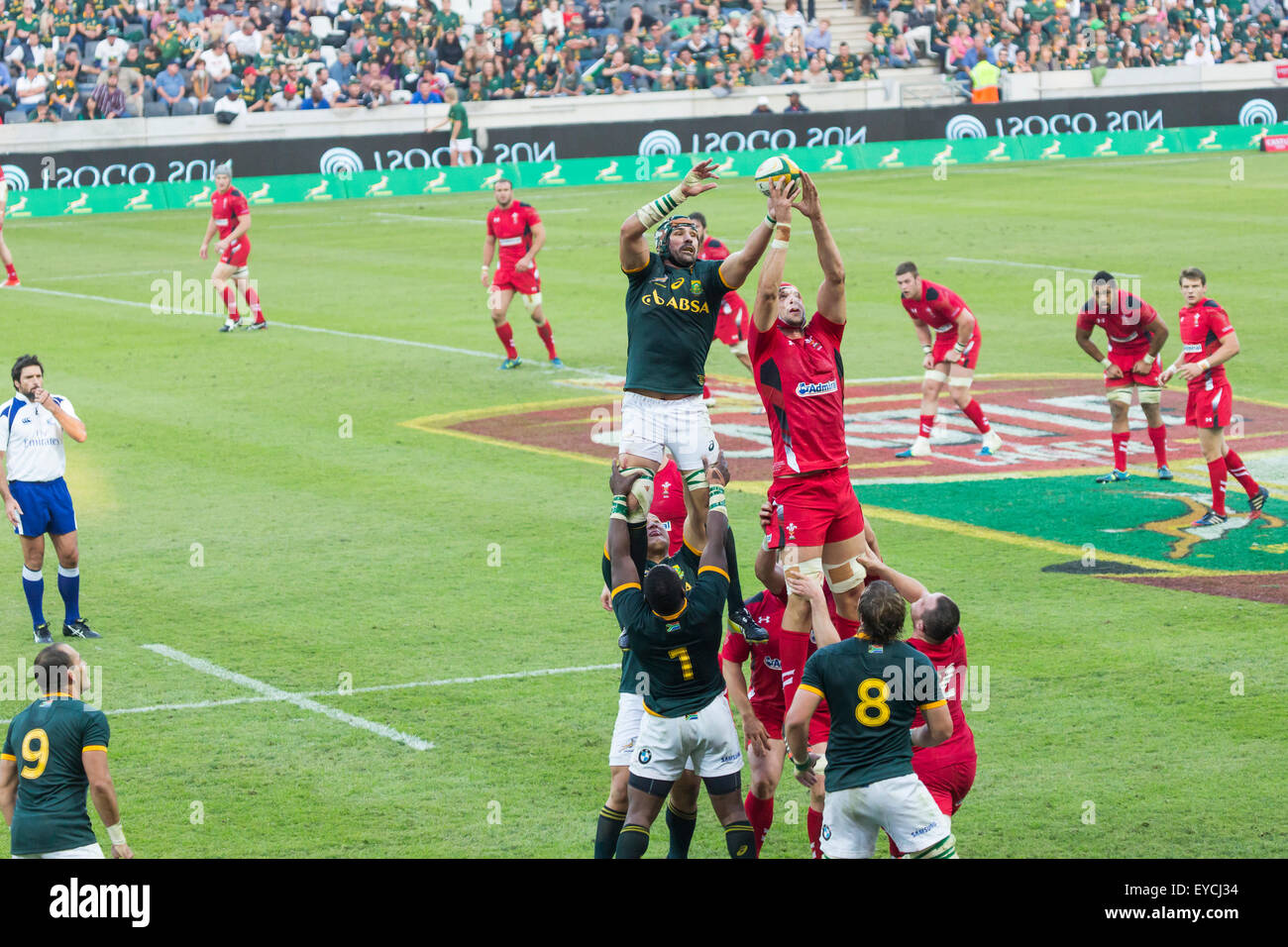 Victor Matfield of South Africa in the lineout  during the 2nd test match between South Africa and Wales - Stock Image