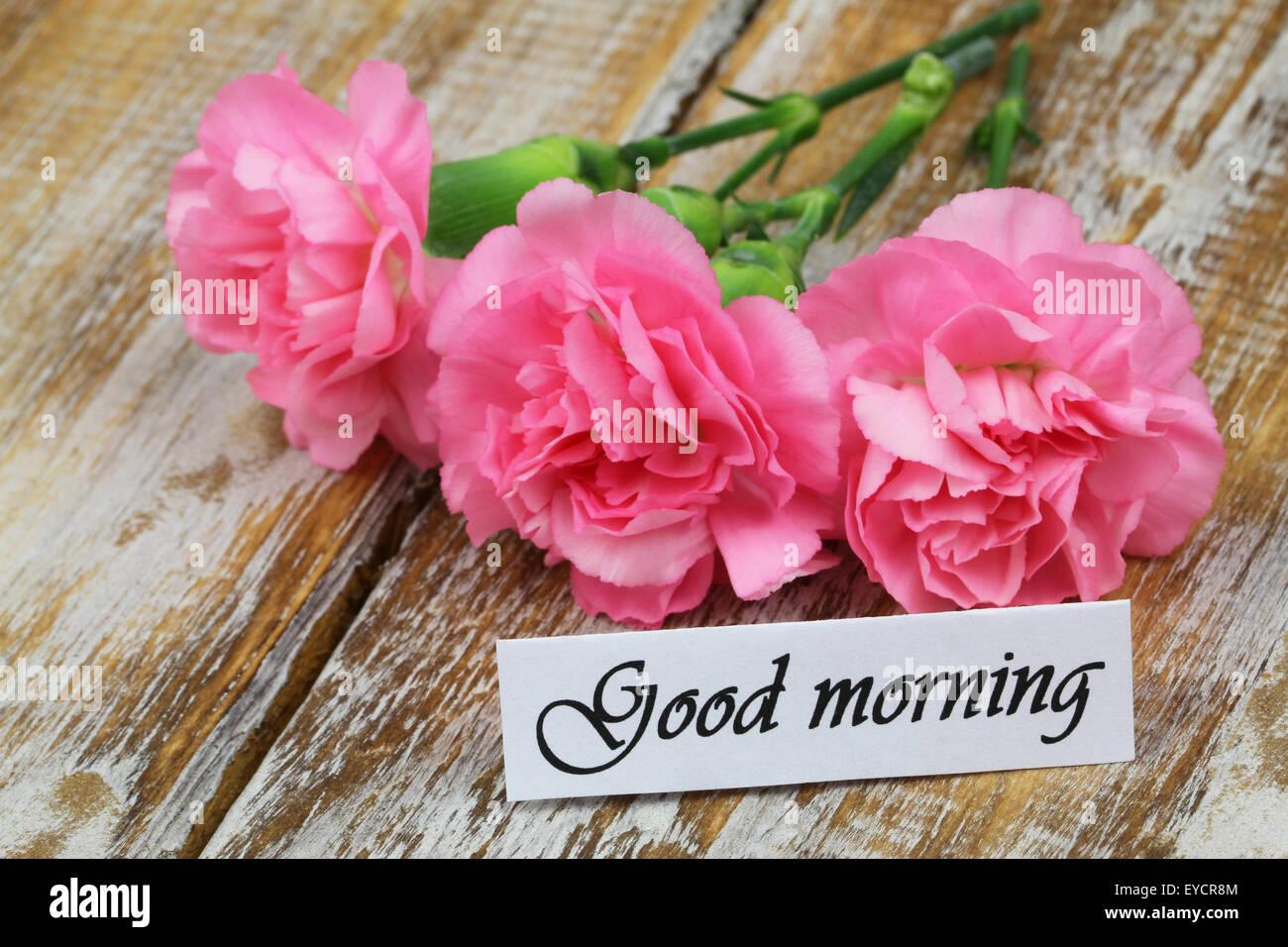 Good Morning Flower Stock Photos & Good Morning Flower Stock