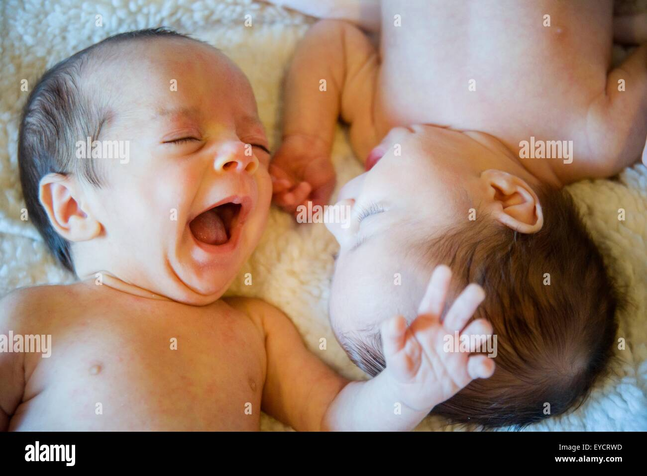 Twin baby sister and brother - Stock Image