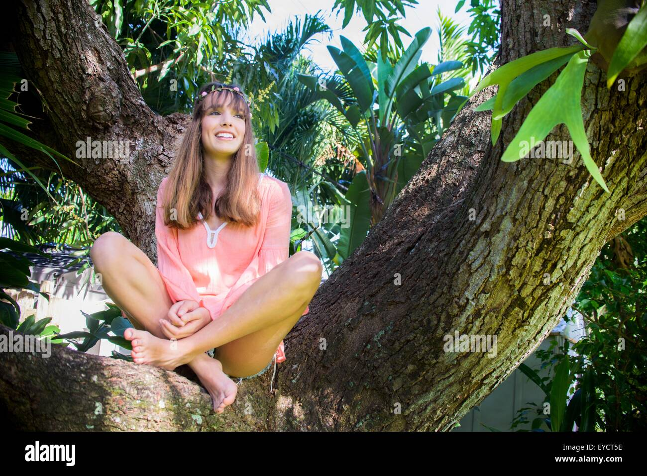 Portrait of young woman looking out from tree - Stock Image