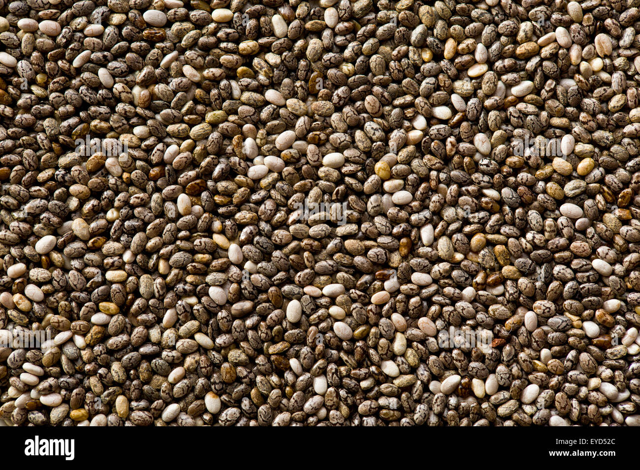 The chia seeds. Healthy superfood. - Stock Image
