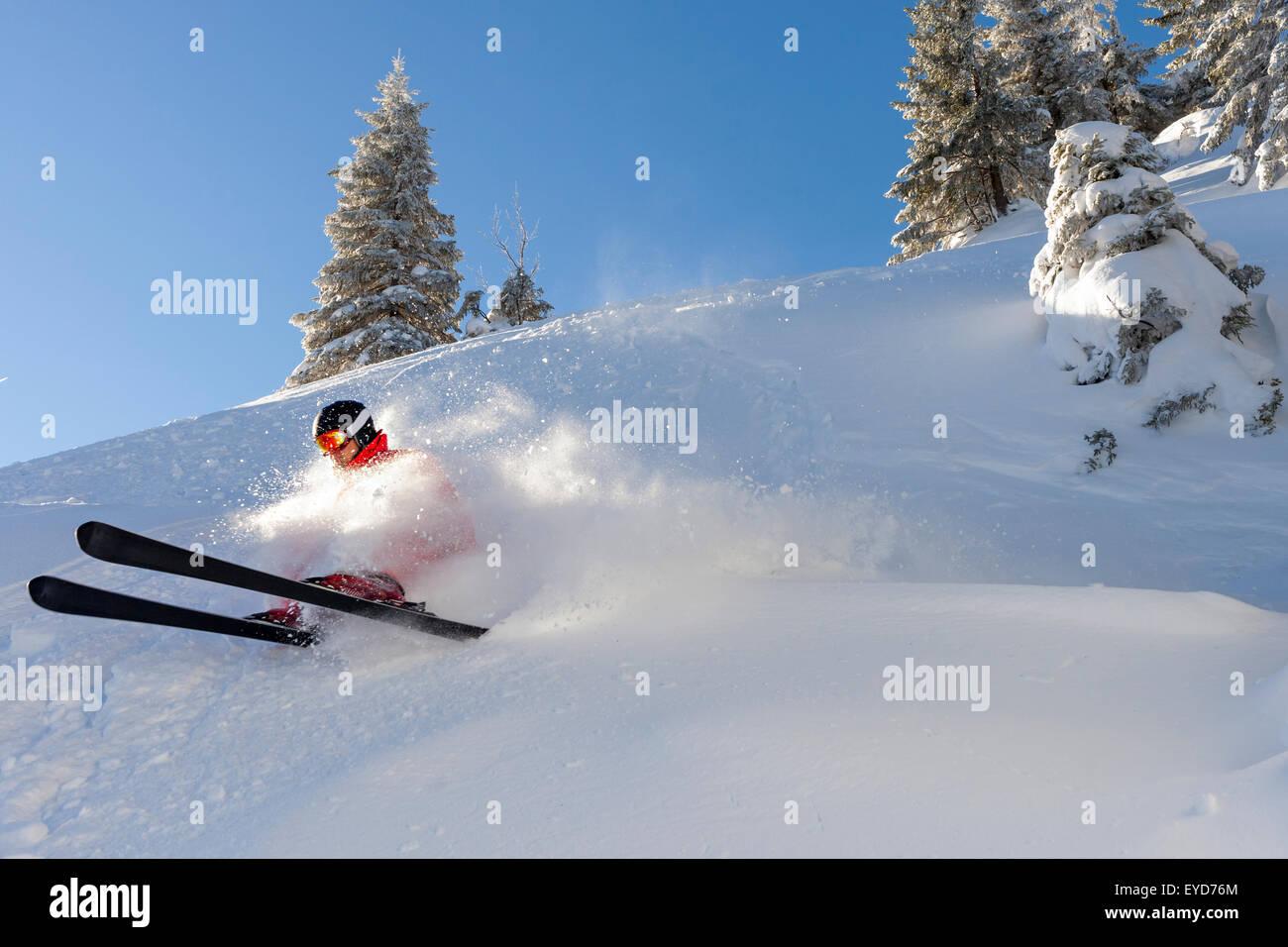 Ski holiday, Man skiing downhill, Sudelfeld, Bavaria, Germany - Stock Image