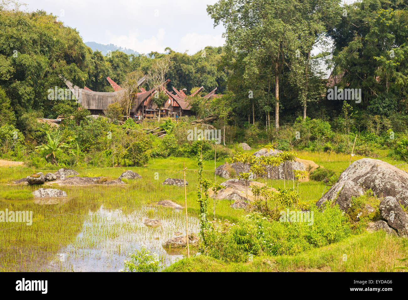 Little traditional village with tipical boat shaped roofs in idyllic location among beautiful terraced rice paddies Stock Photo