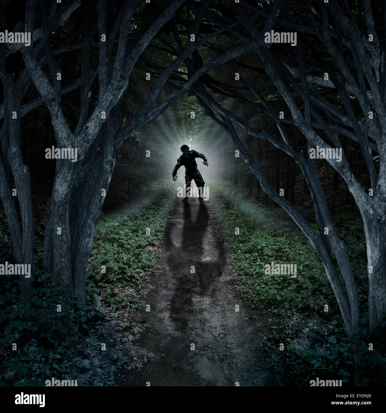 Horror monster walking in a dark forest as a scary fantasy concept with a creepy thing coming out of a remote wilderness - Stock Image