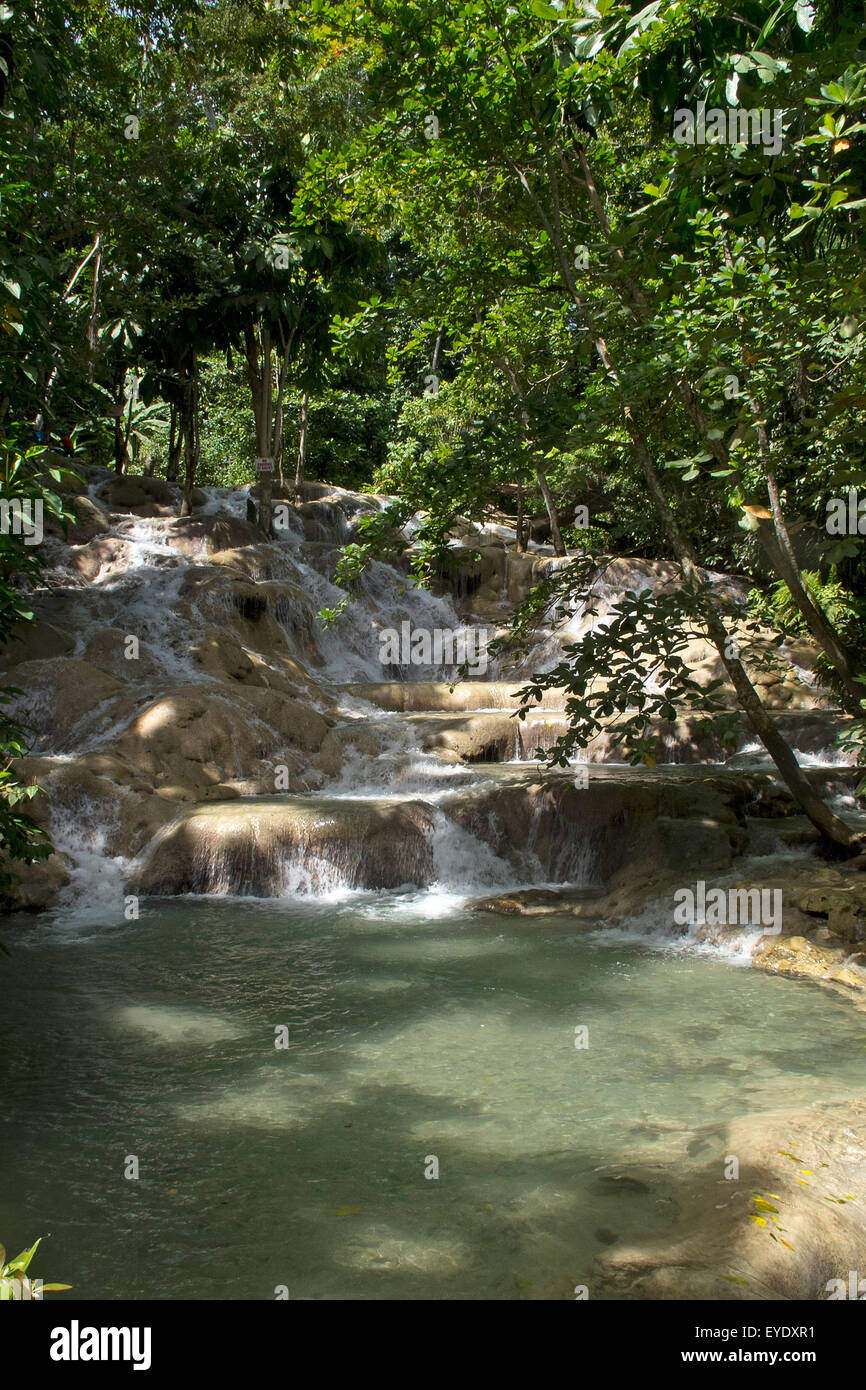 Base of Dunn's River Falls, Ocho Rios, St. Ann, Jamaica - Stock Image