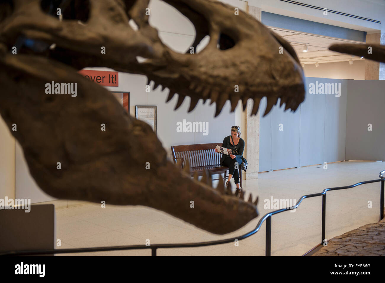 Dinosaurs E Alive In The Texas Hill Country