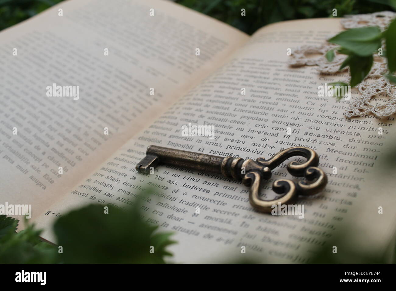 Old key on a book - Stock Image