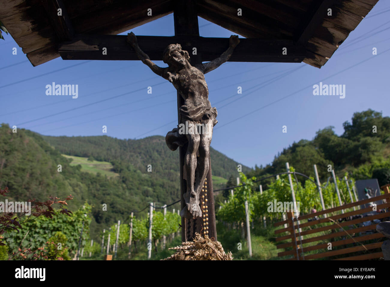 A crucifix located on the edge of a vineyard in the South Tyrolean town of Klausen-Chiusa in northern Italy. - Stock Image