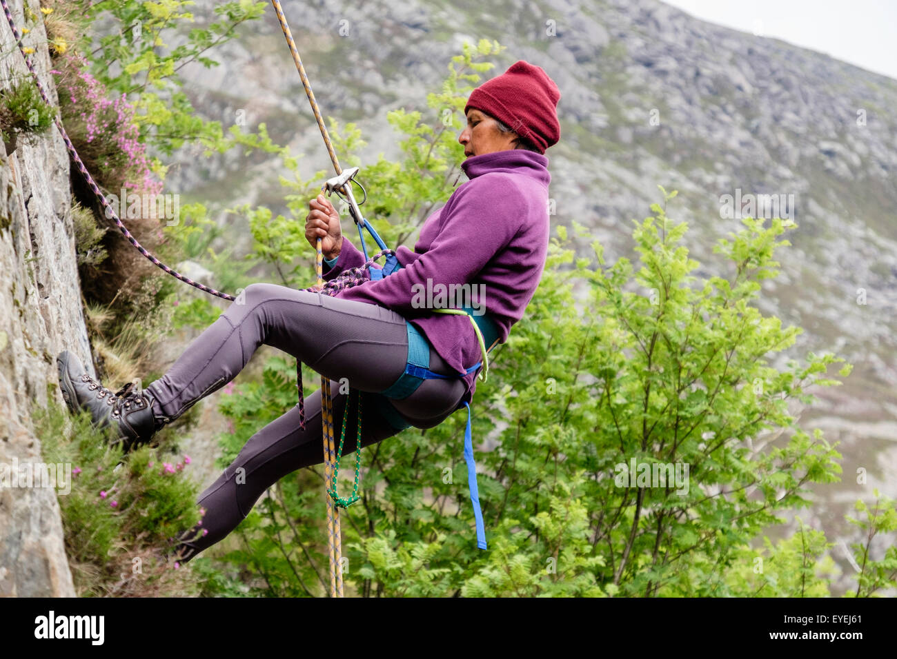 Female rock climber abseiling with a safety rope and climbing harness on a rockface. Ogwen, Snowdonia, North Wales, Stock Photo