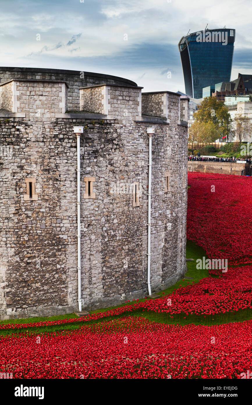 London,Poppy,blood swept lands and seas of red - Stock Image